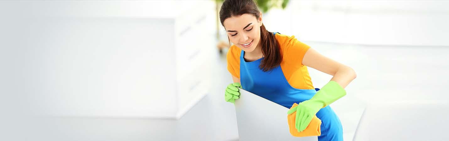 ev-temizleme-firması-elazığ